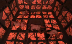 Cube (Cubo) - 1997
