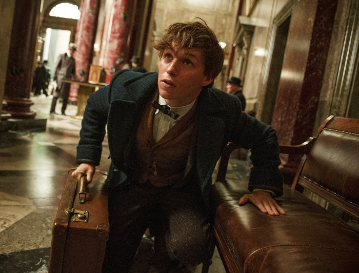 Fantastic Beasts and Where to Find Them (Animais Fantásticos e Onde Habitam) - 2016