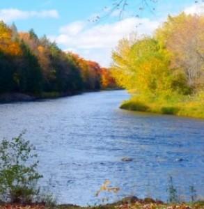 river-221192 A
