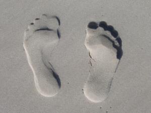 MY HAPPY FEET: Foot-care Basics for Vibrant Health (Catherine Siri Sat Liska) @ Vibrant Joy Movement Studio