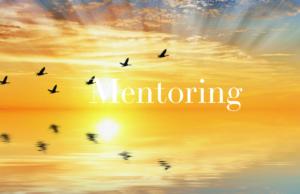 Mentoring Group Training - 8 Sessions (Elizabeth Sullivan) @ Saint Paul, MN or online via Zoom