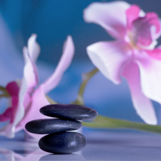 Elevating into higher consciousness