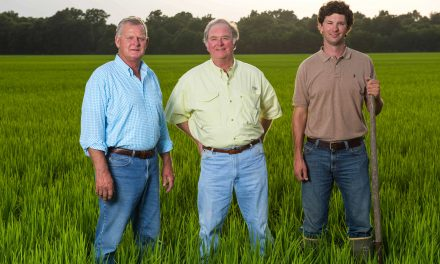 A Mississippi family's niche-market concept behind Delta Blues Rice Company