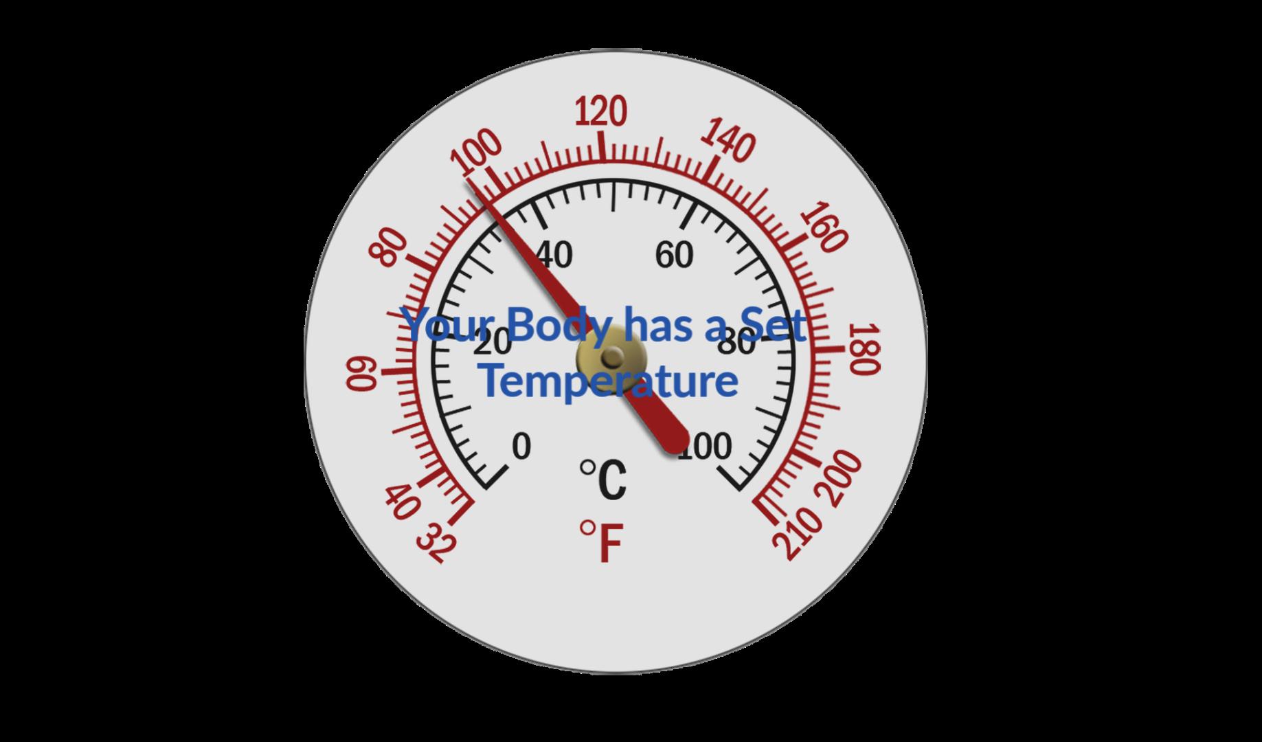 Body Weight Set Temperature