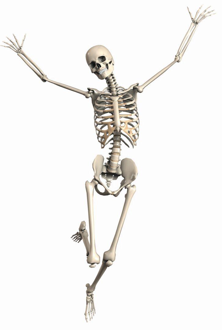 Skeleton having fun