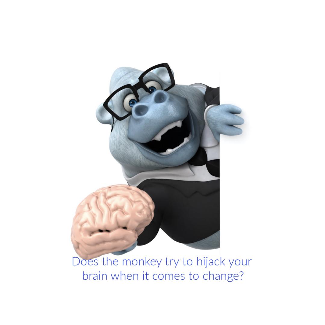 Monkey with a brain