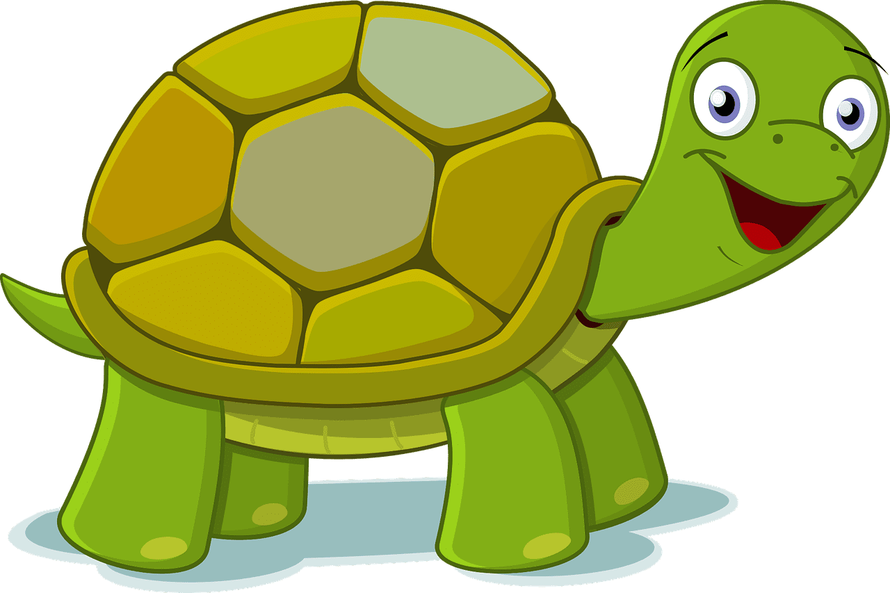 cartoon smiling tortise