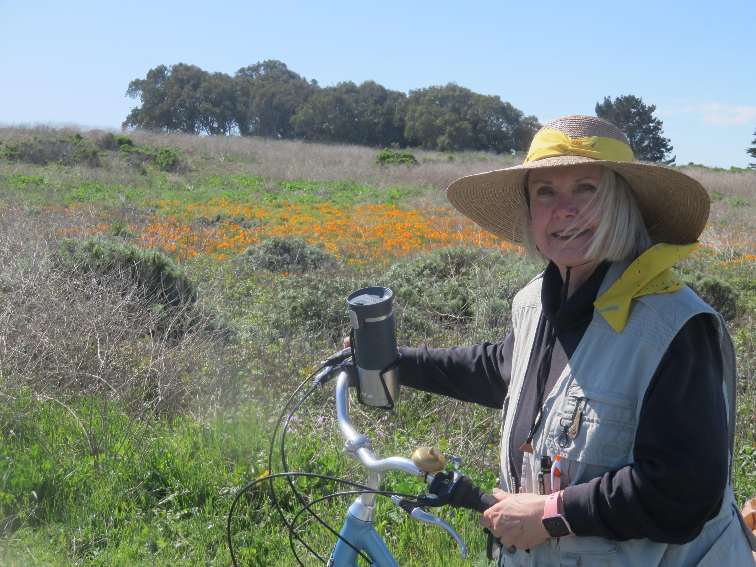 The Cycling Painter Anita Hampton