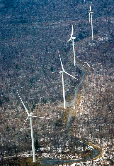 Forested ridges are the only intact forest habitats in many parts of Pennsylvania.  Industrial wind projects are changing many large forest blocks into smaller areas that are not as healthy.