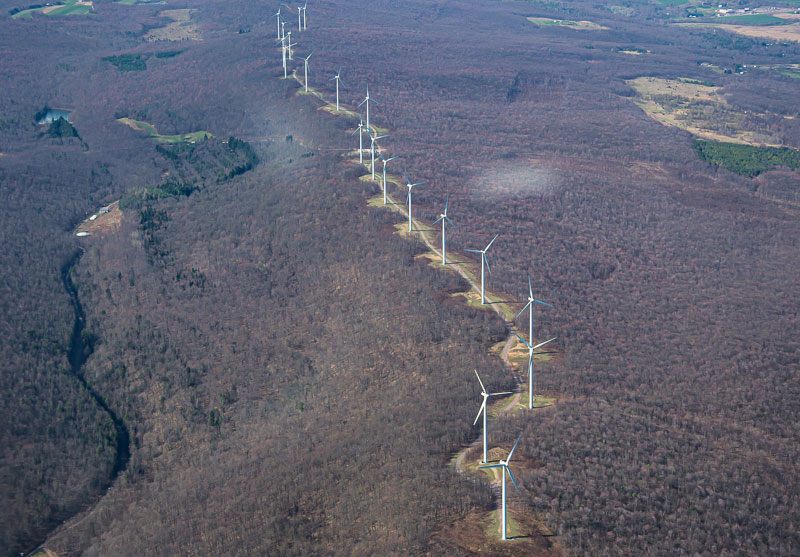 The Meyersdale Wind project in Somerset Co. is typical of many projects built along the top of Pennsylvania's mountains.  The roads and turbine pads fragmented this large block of forest.