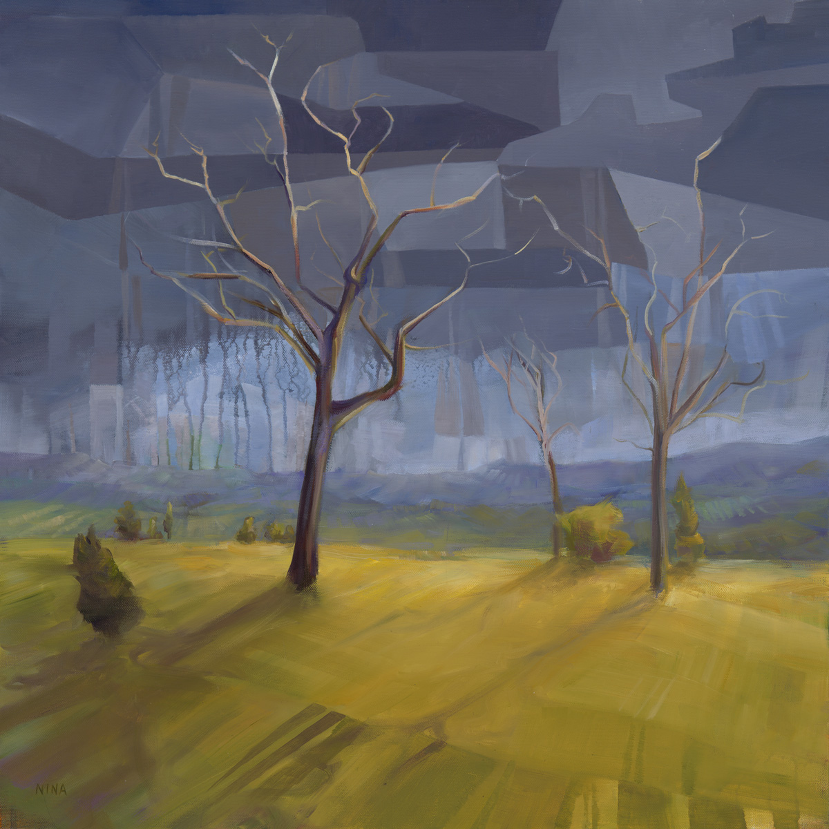 Landscape of fields and a storm on the horizon