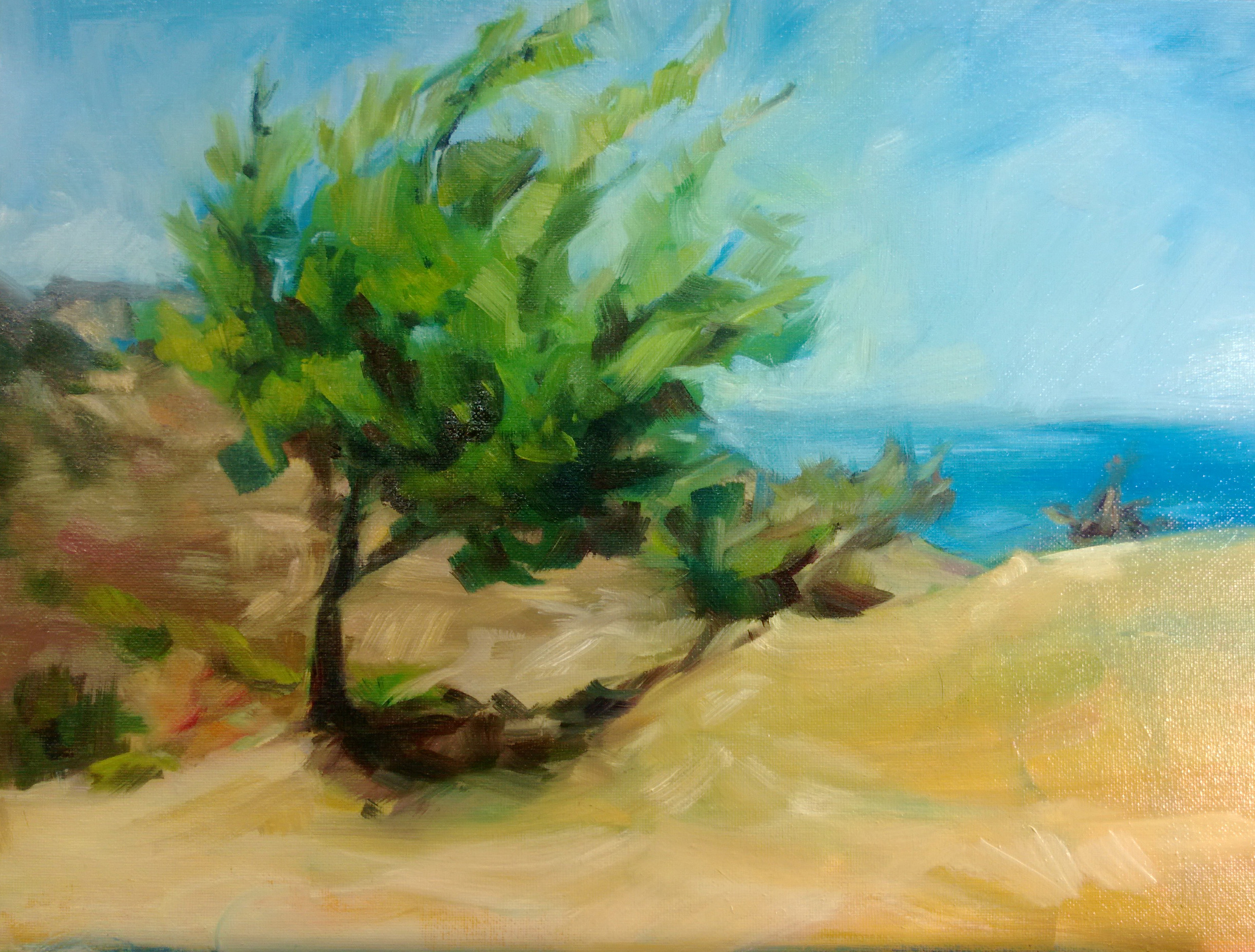 Painting of an olive tree on the Mediterranean Coast.