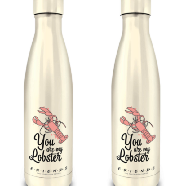 Friends (You Are My Lobster) Metal Drinks Bottle