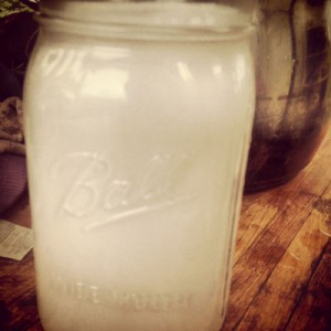 Fresh Coconut Milk