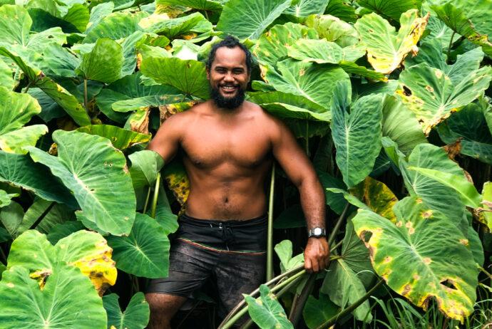 Aloha Aina Poi Co
