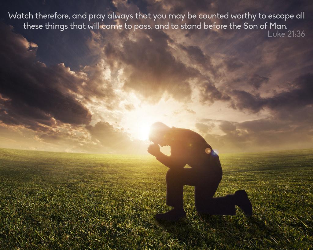 Daily Bible Reading: Luke 21:20-38
