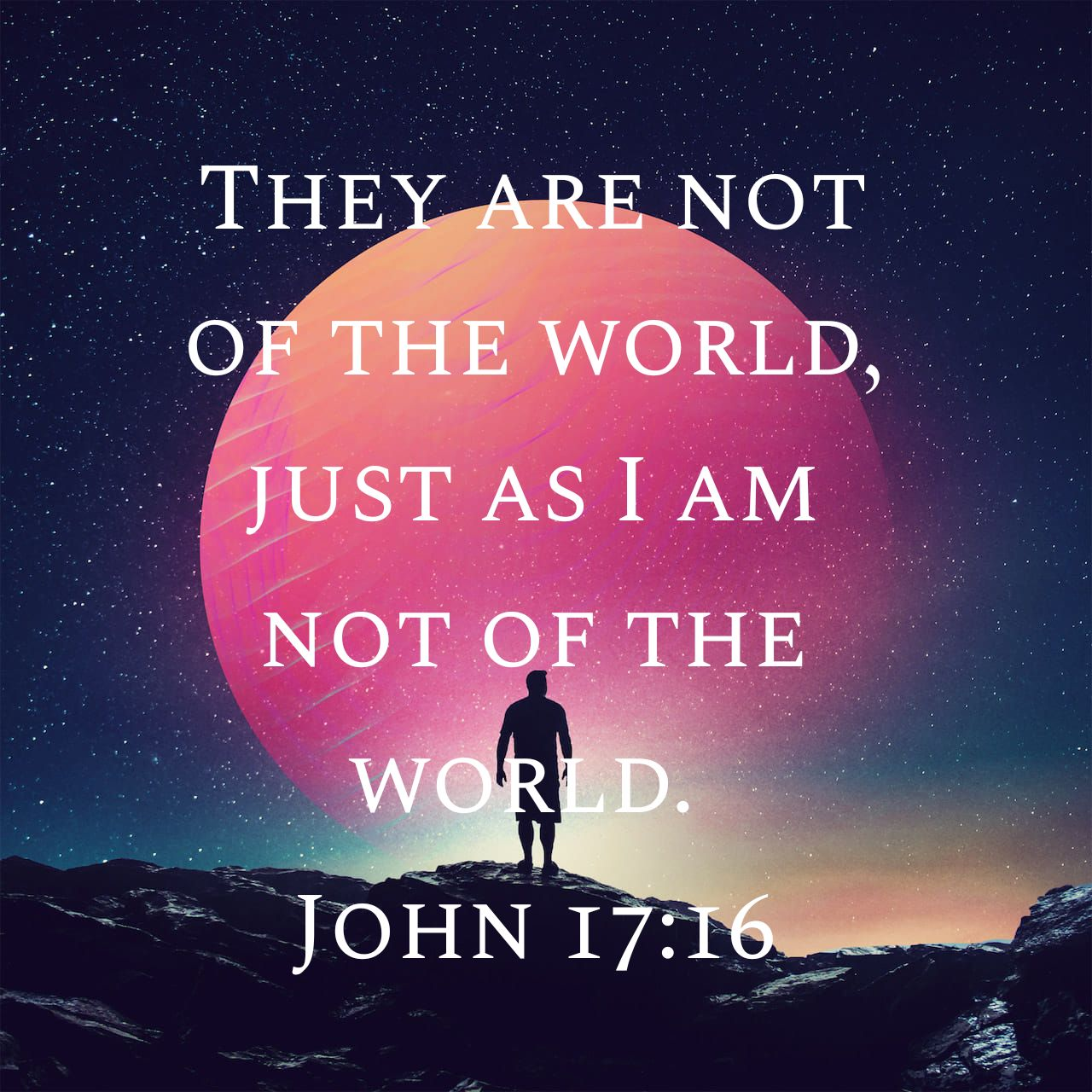 Daily Bible Reading: John 17