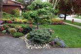 rainbowgardening-regular-gardening