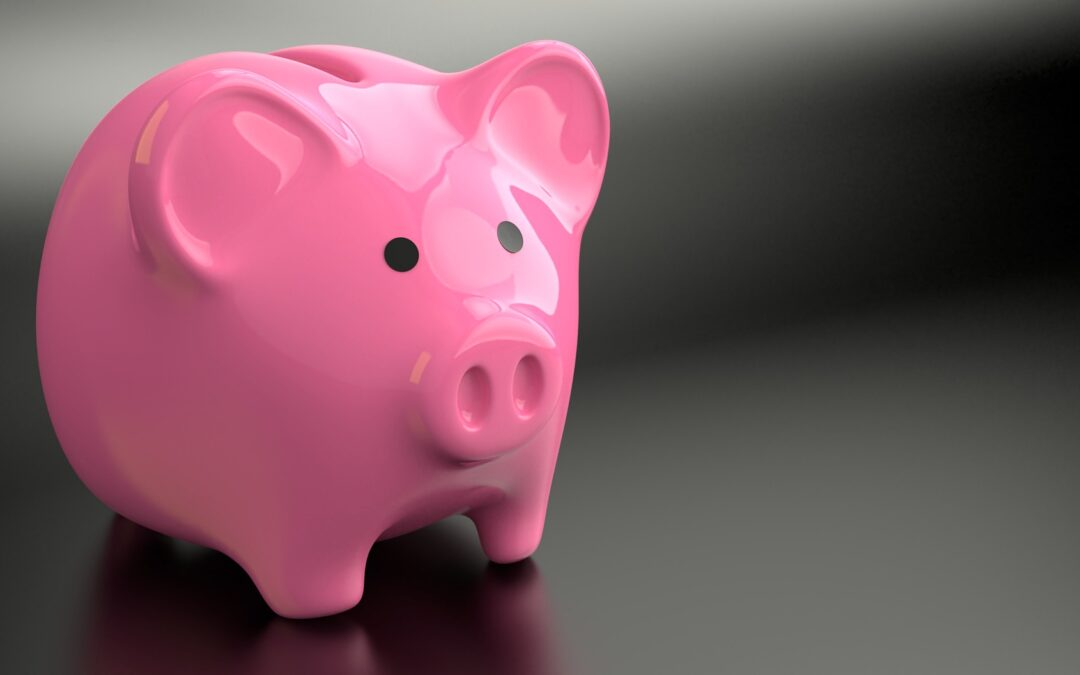 Setting a household budget for the year