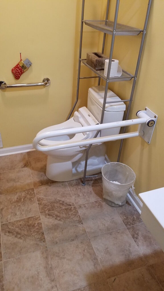 Photo: Toilet Grab Bar