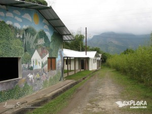 cacao coffee plantation tours santo domingo