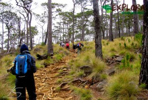 Pico Duarte Private Hiking Tour