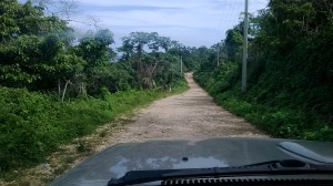 Road to larimar mine