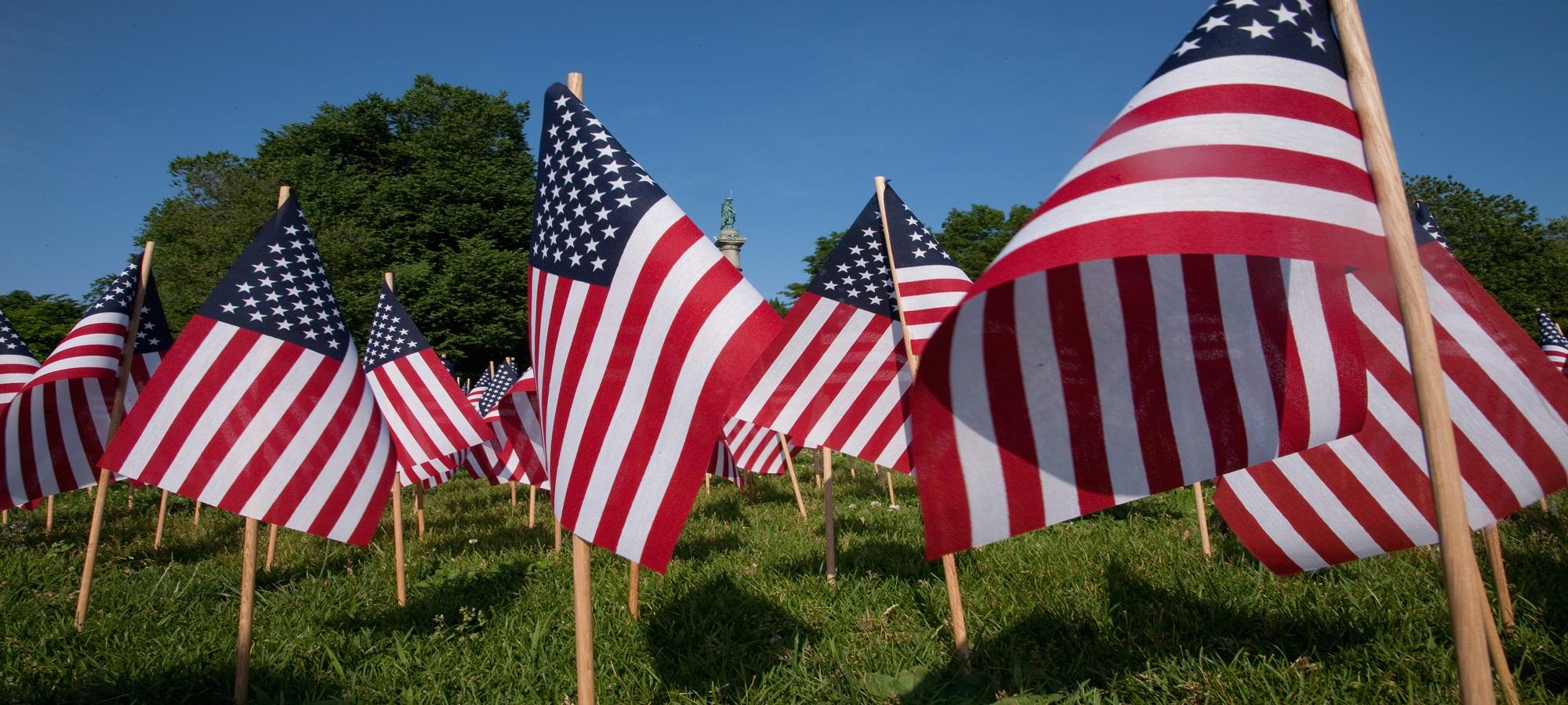 Flags Big