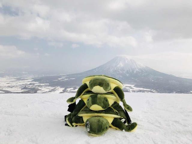 北海道||二世谷||滑雪||粉雪世界