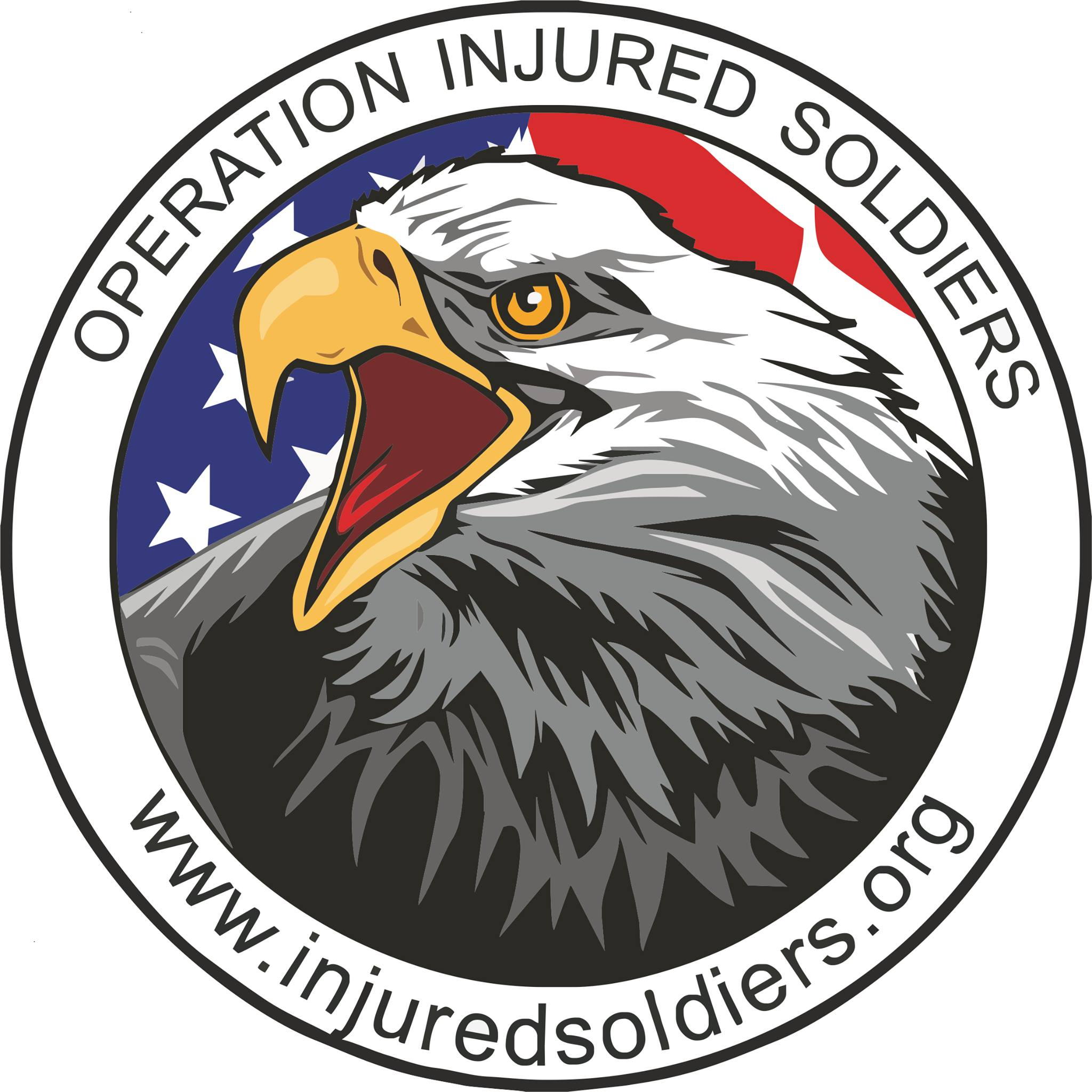 soldiers logo