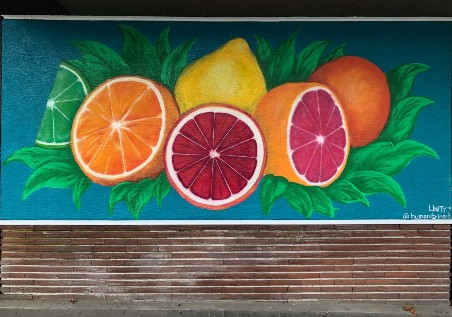 Mural featuring various citrus fruits on a bright teal background