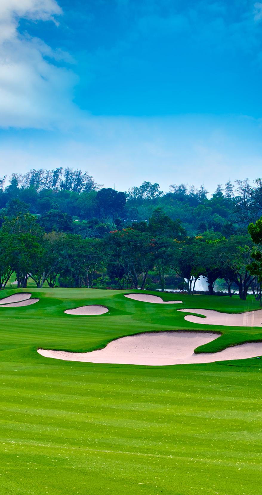 home_rdu_golf