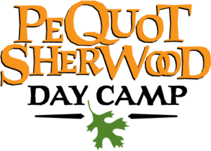 PS Day Camp Logo