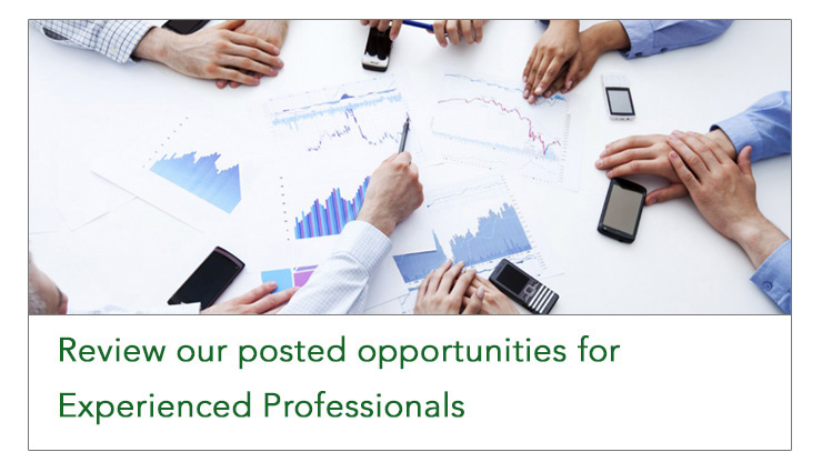 Review our posted opportunities for Experienced Professionals