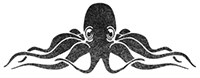 The Uncommon Octopus
