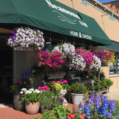 The Store in Spring