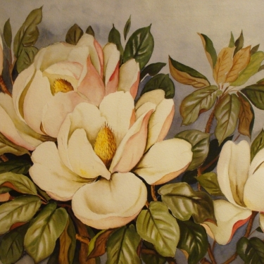 Barbara Vinette Magnolia Blossoms 22x30 Watercolor