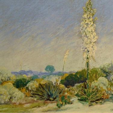 Carl Sammons The Century Plant 10x13 Pastel