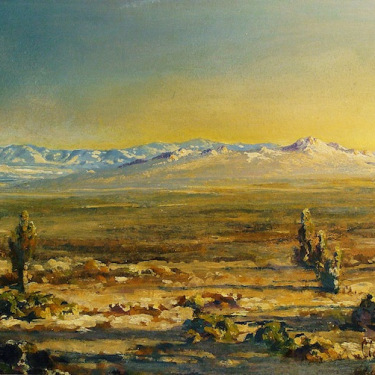 Clarkson Dye Afternoon Light Mojave 14x22 Oil Painting