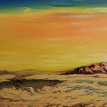 Elizabeth Schleussner Barren Desert 16x20 Oil on Canvas