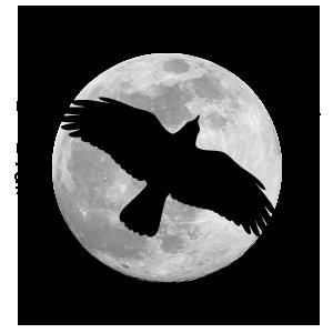ss-logo-dark