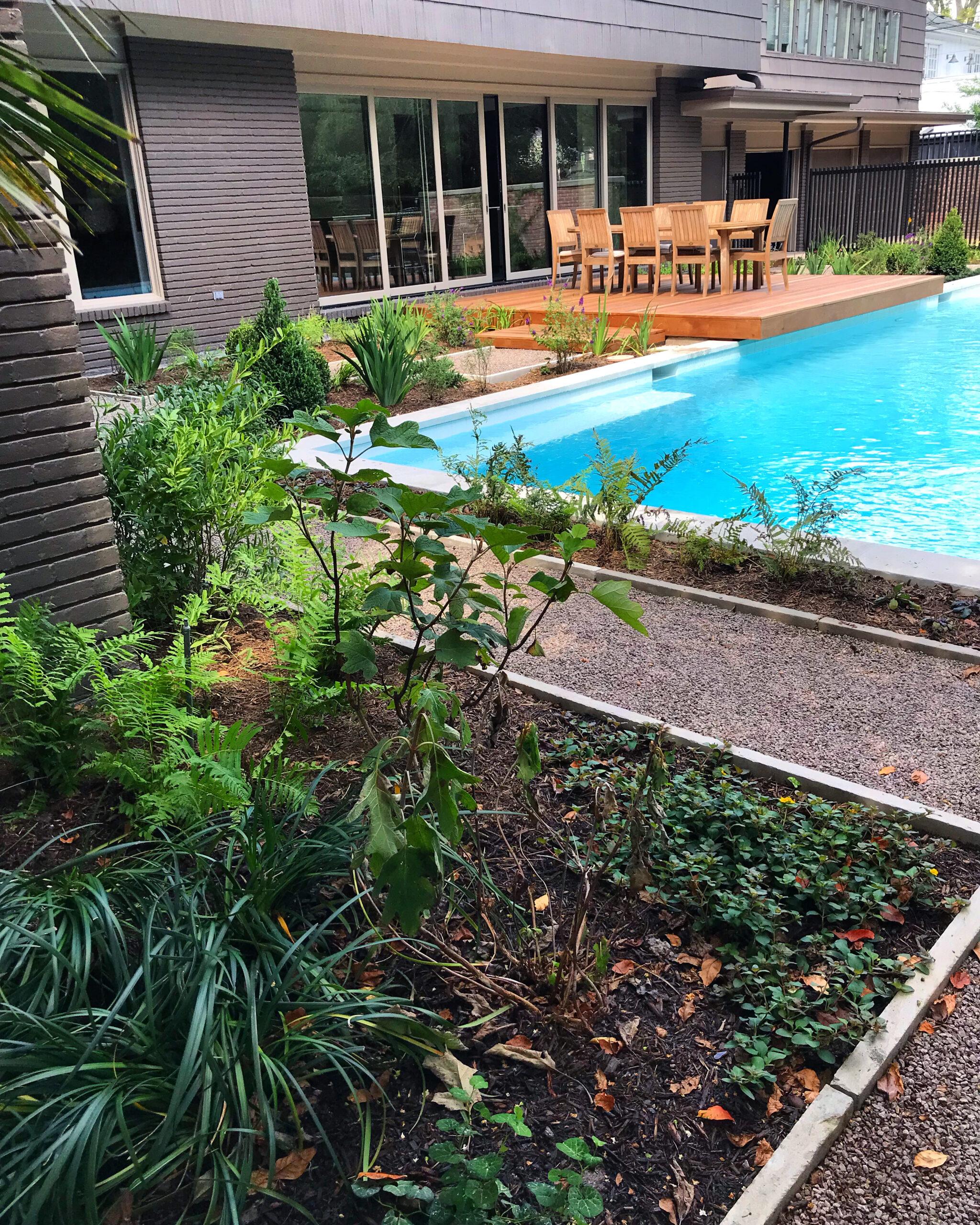 modern houston landscaping, modern houston landscape design, houston landscape design, pool landscaping, modern landscape design