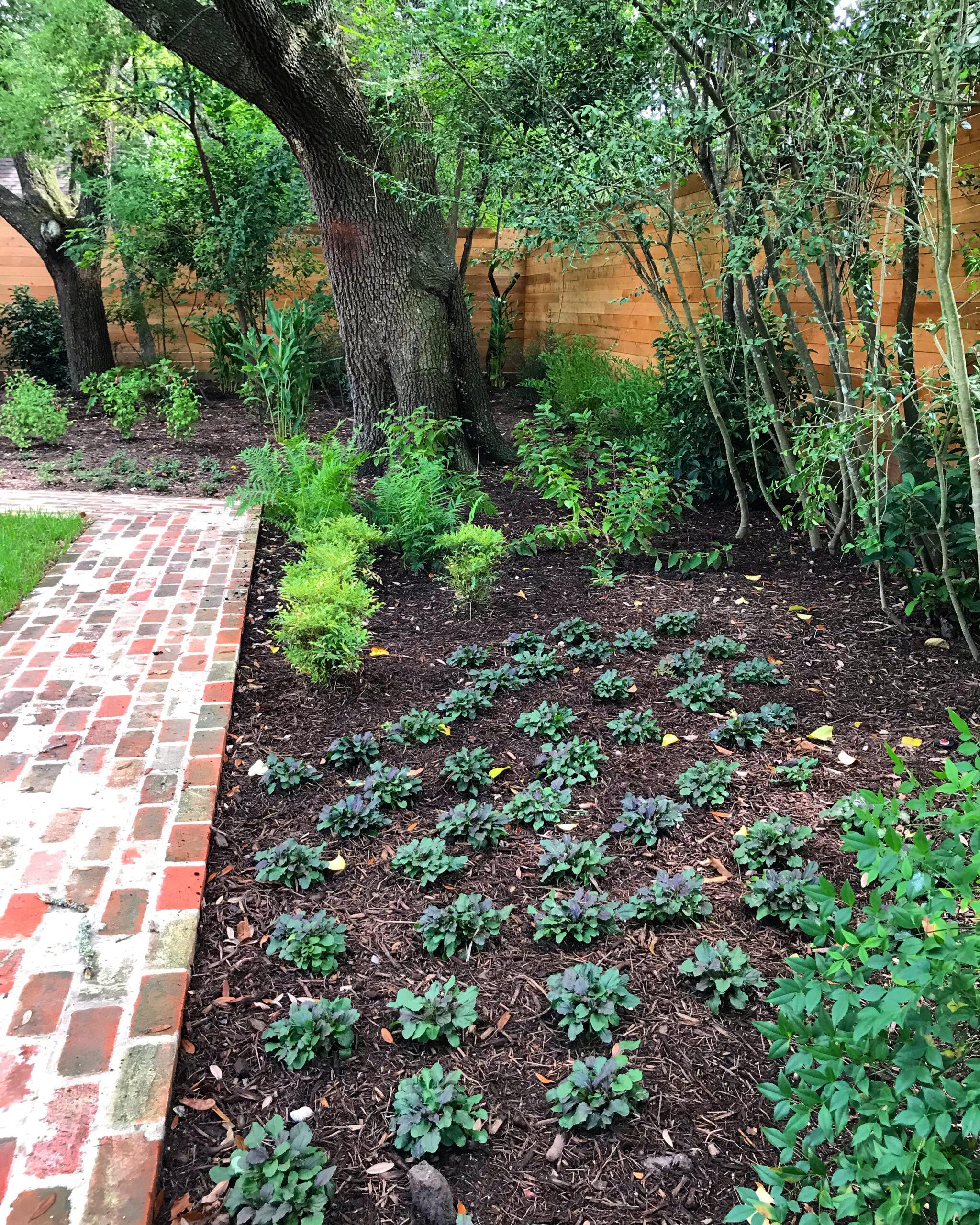 houston woodland garden, houston modern landscaping, houston landscape design, houston modern landscape design,