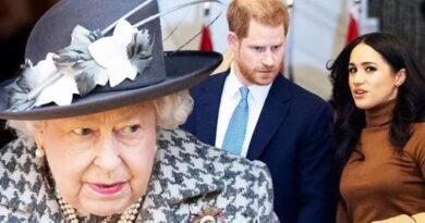 """Nữ hoàng Elizabeth """"cắt tình"""" với vợ chồng Hoàng tử Harry"""