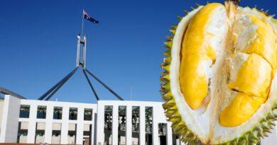 Trái sầu riêng là 'thủ phạm' gây báo động làm náo loạn thủ đô Úc