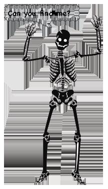 Skeleton in a Closet