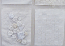 Texture in White ©Dianne Corso