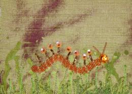 Goldwork Caterpillar ©Susan Sasnett