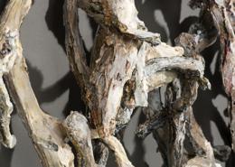 Ant's Nest - Entanglement detail ©Terri Shinn