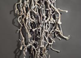 Ant's Nest - Entanglement ©Terri Shinn